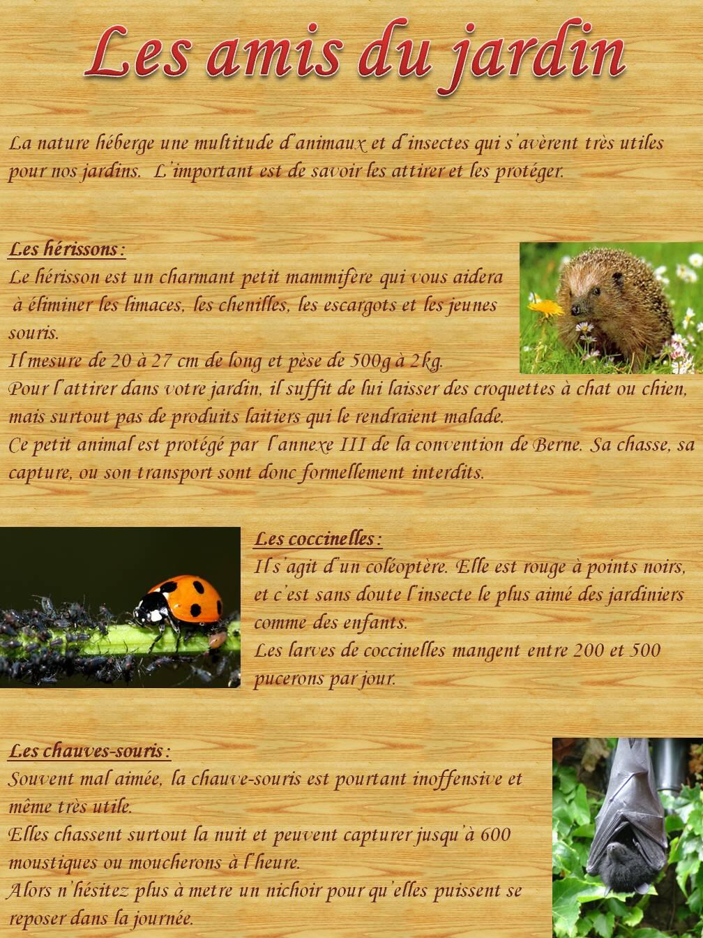 Amis du jardin for Au jardin by les amis